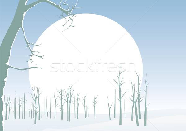 Tél tájkép természet festmény sziluett karácsony Stock fotó © iaRada