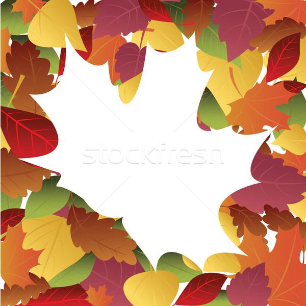 Keret őszi levelek színes fa levél festmény Stock fotó © iaRada