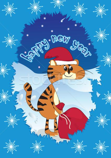 Tigris mikulás ajándékok sapka táska terv Stock fotó © iaRada