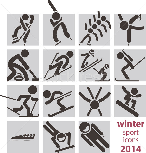 Winter sport icons Stock photo © iaRada