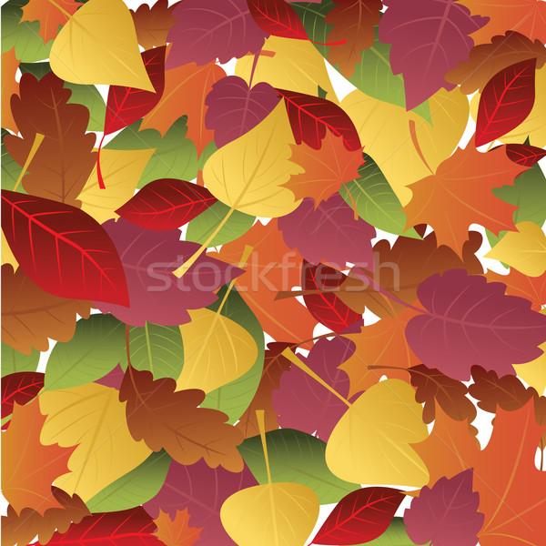 őszi levelek színes fa természet levél piros Stock fotó © iaRada