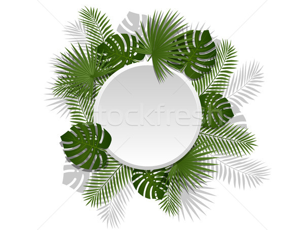 Green summer tropical round element with exotic palm leaves and plant. Vector floral design on white Stock photo © Iaroslava
