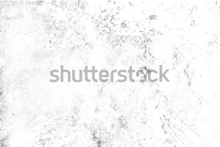 Subtle black halftone vector texture overlay. Monochrome abstract splattered white background Stock photo © Iaroslava