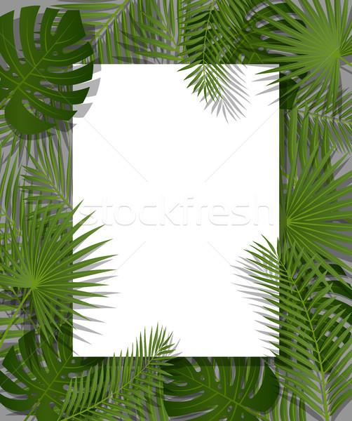 White Paper On Green Summer Tropical Background Exotic Palm Leaves And Plant Vector Floral Design Vector Illustration C Iaroslava 8210292 Stockfresh 19,453 best tropical background free video clip downloads from the videezy community. plant vector floral design