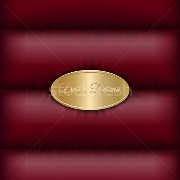 Winter beneden jas donkere Rood gouden Stockfoto © Iaroslava