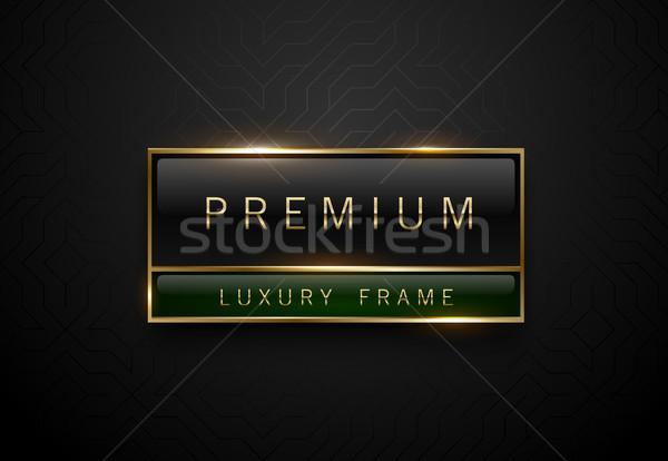 Premie zwarte groene label gouden frame Stockfoto © Iaroslava