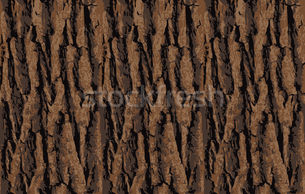 Stock photo: Seamless tree bark texture. Endless wooden background web page fill graphic design. Oak or maple