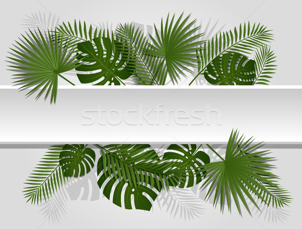 Green summer tropical header with exotic palm leaves and plant. Vector floral design on white line Stock photo © Iaroslava