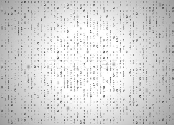 Vector binary code white background. Big data and programming hacking, decryption and encryption Stock photo © Iaroslava