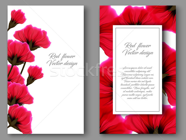 Vector botanical vertical banners with red flower. Design for natural cosmetics, health care product Stock photo © Iaroslava