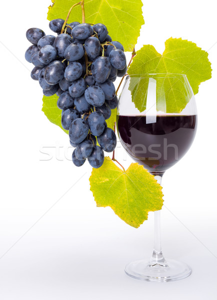Glass of red wine with blue grape cluster Stock photo © icefront