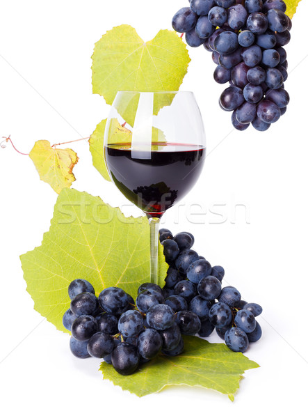Glass of red wine with blue grape clusters Stock photo © icefront