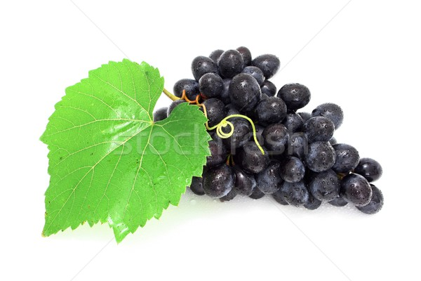 Blue grape cluster Stock photo © icefront