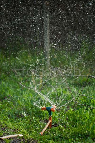 öntözés dob vízcseppek messze víz fű Stock fotó © icefront