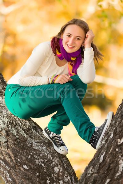 Hermosa muchacha adolescente aire libre otono día Foto stock © icefront