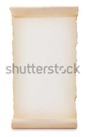 Blank rolled paper Stock photo © icefront