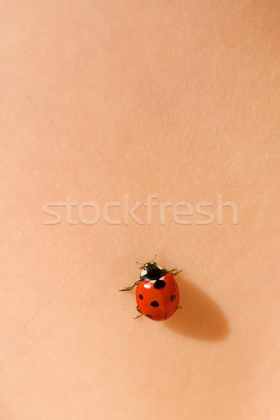 Ladybug on skin Stock photo © icefront