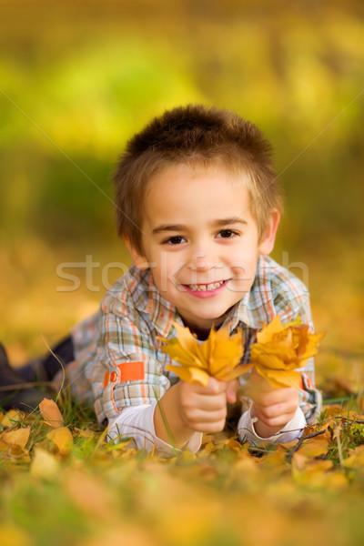 Stock fotó: Boldog · kicsi · fiú · szőlőszüret · levelek · őszi · levelek