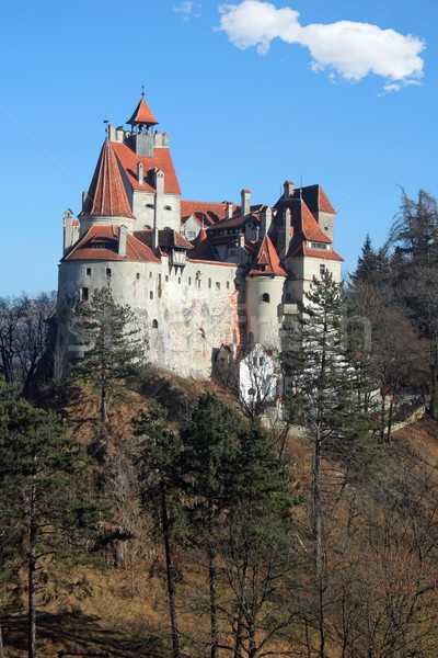 Bran Castle, Romania Stock photo © icefront