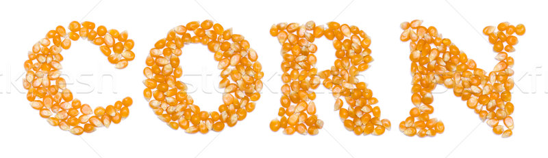 Corn script made of seeds Stock photo © icefront