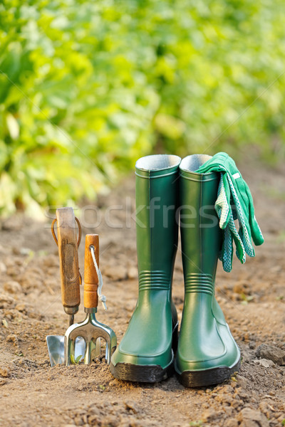 Gardening tools and equipment Stock photo © icefront