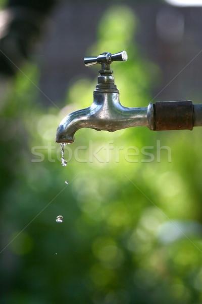 водопроводной саду падение чистой среде ржавые Сток-фото © icefront