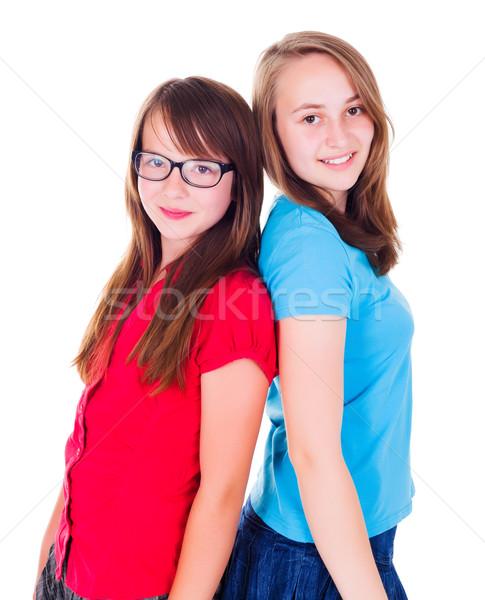 Retrato dos adolescente ninas pie sonriendo Foto stock © icefront
