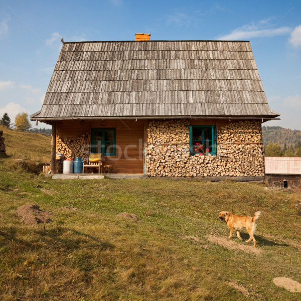 Simple rural house Stock photo © icefront