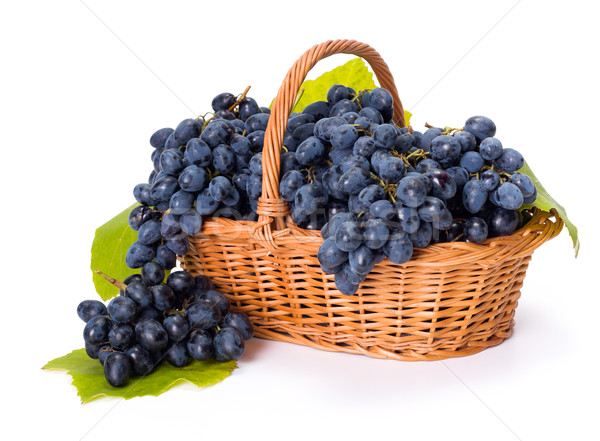 Blue grape clusters in basket Stock photo © icefront