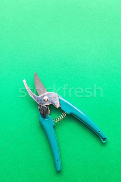 Garden scissors on green background Stock photo © icefront