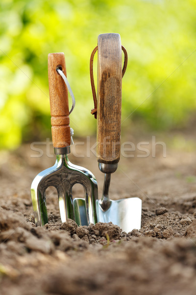 Jardin outils coincé sol Photo stock © icefront