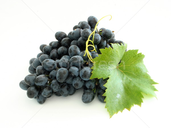 青 ブドウ クラスタ 孤立した 葉 ワイン ストックフォト © icefront