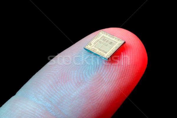 Silicon microchip on fingertip Stock photo © icefront