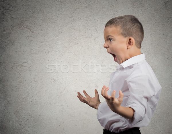 Zły chłopca krzyczeć widok z boku portret Zdjęcia stock © ichiosea