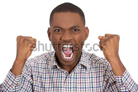 furious man with fists in the air Stock photo © ichiosea