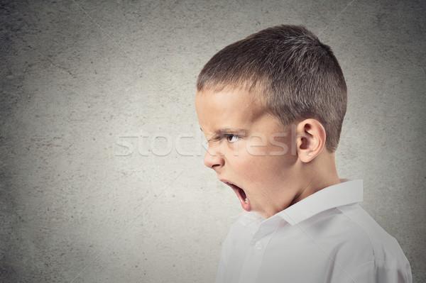Zły chłopca krzyczeć widok z boku portret dziecko Zdjęcia stock © ichiosea