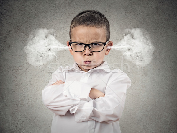 Angry upset boy, little man Stock photo © ichiosea
