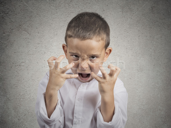 angry child, Boy Screaming hysterical Stock photo © ichiosea