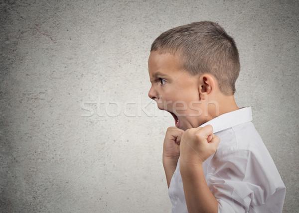 Enojado nino gritando primer plano vista lateral retrato Foto stock © ichiosea