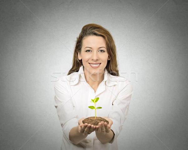 Jeden roślin kobiet ręce odizolowany Zdjęcia stock © ichiosea