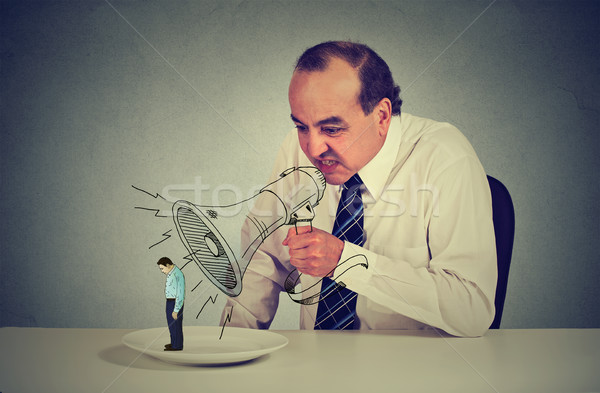 Business man boss screaming through megaphone at young scared colleague  Stock photo © ichiosea
