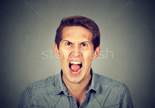 portrait of young angry man Stock photo © ichiosea