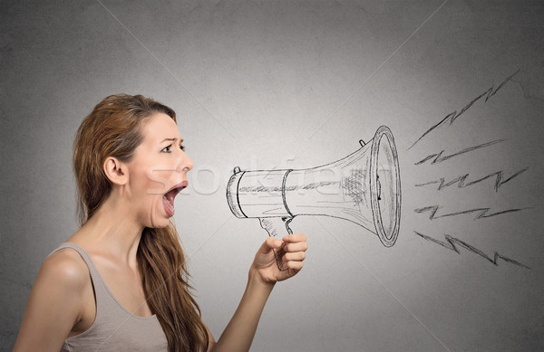 Angry screaming woman holding megaphone Stock photo © ichiosea