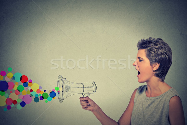 angry screaming young woman with megaphone Stock photo © ichiosea