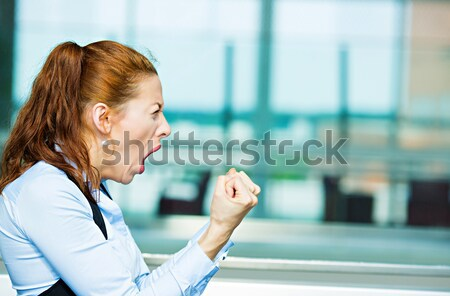 Stressed, screaming business woman Stock photo © ichiosea