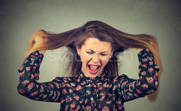 Very angry woman pulling her hair out screaming  Stock photo © ichiosea