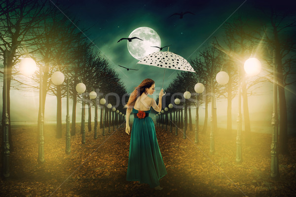 Woman with umbrella walking out in the street lights Stock photo © ichiosea