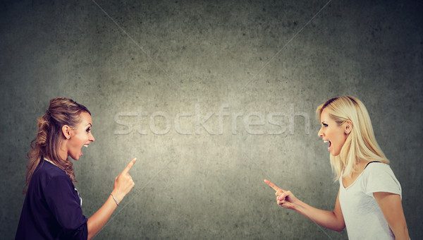 Twee boos jonge vrouwen vechten schreeuwen ander Stockfoto © ichiosea