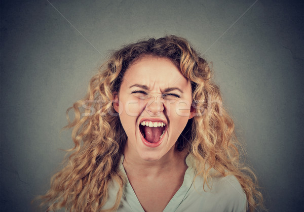 angry young woman having nervous breakdown screaming Stock photo © ichiosea