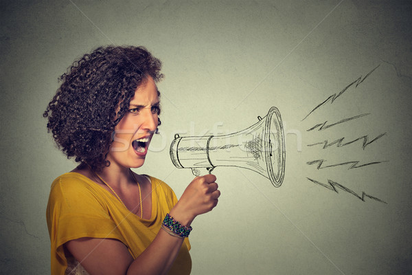 angry screaming young woman holding megaphone Stock photo © ichiosea